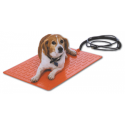 beagle on pet heating pad
