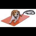 beagle on pet heating pad