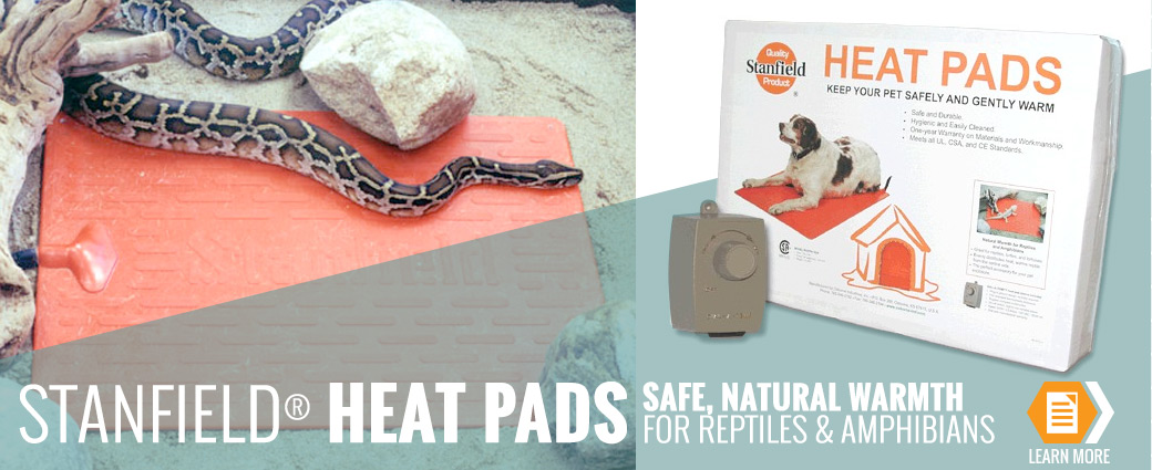 Heat Pads for Exotic Animals