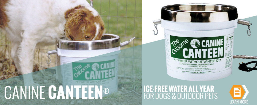 Canine Canteen for dogs and outdoor pets