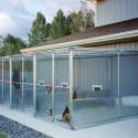 Proper Kennel Ventilation Systems