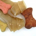 colorful dog bones and treats - pet suppies